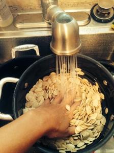 lavando as sementes