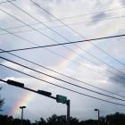 arco iris antes que eles crescam