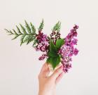 flowers1-680x660